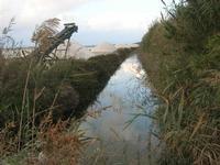 Saline Infersa - 7 novembre 2010  - Marsala (1038 clic)