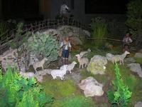 Il Presepe animato in terracotta nella Chiesa del Carmine - 4 dicembre 2010  - Caltagirone (1421 clic)