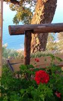 panorama  - Castel di tusa (6815 clic)