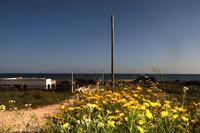 Profumo di mare immerso in una primavera incontaminata  - Tre fontane (5960 clic)