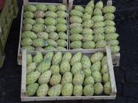 Fichidindia al mercato   - Catania (3873 clic)