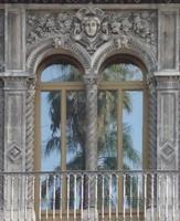 Palma riflessa Palma riflessa sulla vetrata di un palazzo di Via Di Sangiuliano  - Catania (2329 clic)