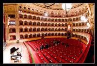 Teatro Massimo Bellini  - Catania (4220 clic)
