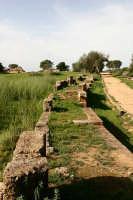 Resti delle mura greche di Caposoprano  - Gela (7249 clic)