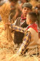 A Raddusa, piccolo centro agricolo dell'entroterra siciliano ogni anno a settembre si svolge la rivisitazione dell'antico rito della pisatura (la separazione del grano dalle spighe) da vedere assolutamente  - Raddusa (6705 clic)