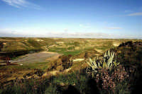 Panoram del territorio  - Niscemi (9163 clic)