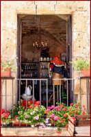 Balcone fiorito  - Marzamemi (3997 clic)