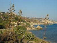 Costa   - Licata (3270 clic)