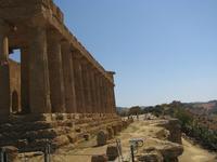 Templi di Agrigento (2370 clic)