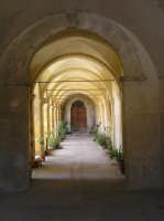 Interno chiesa Sant'Agostino  - Naro (4385 clic)