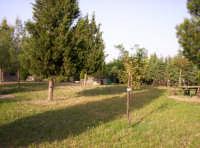 Catenanuova, Parco San Prospero c.da Censi.  - Catenanuova (1951 clic)