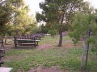 Catenanuova, Parco San Prospero c.da Censi.  - Catenanuova (8120 clic)