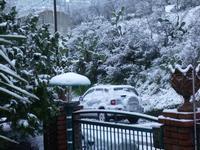 Neve foto di peppino carollo  - Castelbuono (3878 clic)
