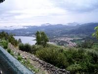 Falcone (7215 clic)