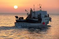 pescherecci al tramonto   - Terrasini (6893 clic)