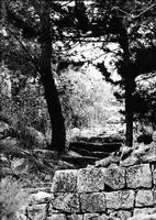 Monserrato '69, sentiero   - Modica (2875 clic)