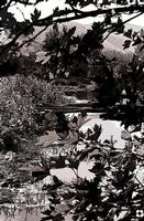 cava Paradiso   - Modica (4539 clic)