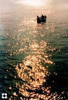 sul mare luccica.......   - Siracusa (3214 clic)