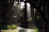 pioggia e sole  MODICA Enzo Belluardo