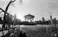 la villa   - Caltagirone (2213 clic)