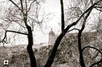 Convento di Santa Maria del Gesù   - Ispica (2213 clic)