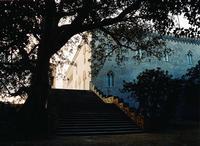 Il Castello dal giardino    - Donnafugata (2634 clic)