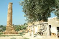 TEMPIO DI VULCANO   - Agrigento (8870 clic)