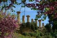 TEMPIO DI ERCOLE   - Agrigento (4800 clic)