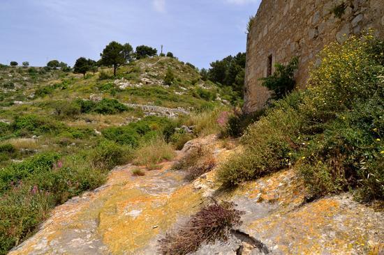 Ragusa - Cava Conservatore -  - inserita il 09-Jun-11