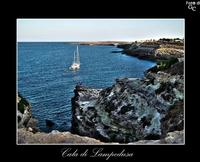 Cala di Lampedusa (3463 clic)