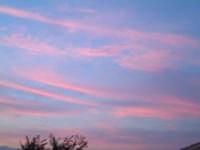 cieli rosati  - Mangano (4632 clic)