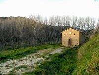 area villa del casale   - Piazza armerina (1084 clic)