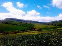 nuvole   - Castellana sicula (559 clic)