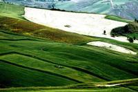 campi agrari   - Petralia soprana (13758 clic)