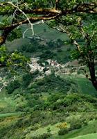 borgo   - Petralia soprana (901 clic)