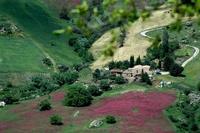 borgo   - Petralia soprana (999 clic)