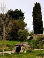 località Madonna dll'olio   - Blufi (700 clic)