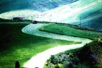 colori della natura   - Castellana sicula (1318 clic)