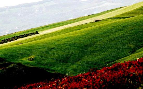 colori della natura - CASTELLANA SICULA - inserita il 25-May-12