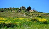 colori   - Castellana sicula (550 clic)