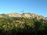 monte s.salvatore e monte alto   - Petralia sottana (3693 clic)
