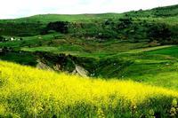 colori   - Castellana sicula (1101 clic)