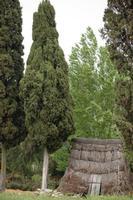 pagliaro vecchia abitazione contadina  - Castellana sicula (4145 clic)