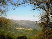 particolare   - Castelbuono (2375 clic)
