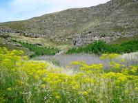 monte conca   - Campofranco (3605 clic)