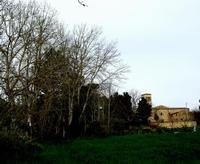 chiesa  Madonna dell'olio   - Blufi (826 clic)