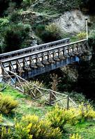 ponte in legno   - Petralia sottana (760 clic)