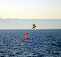 Aquiloni sullo stretto di Messina  (678 clic)