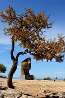 Valle dei Templi Valle dei Templi con le statue di Mitoraj  - Agrigento (2547 clic)