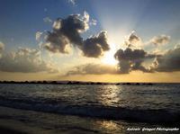 mare   - Rometta marea (5085 clic)